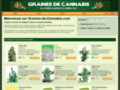 Graine Cannabis Discount